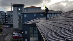 roof maintenance and repairs - Roof Repairs