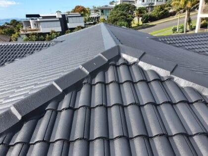 Monier roof tiles restoration 2